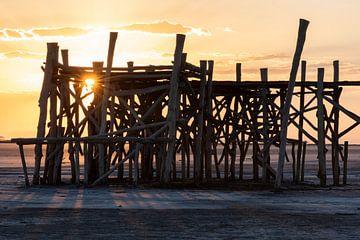 Steiger in Zoutmeer Iran van Daan Kloeg