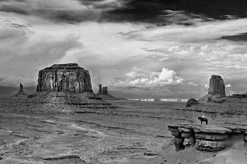 Monument Valley 05 van