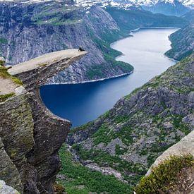 Trolltunga en de Ringedalsvannet - Noorwegen van Ricardo Bouman | Fotografie