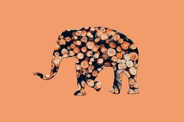 Eléphant bois 2 sur Catherine Fortin