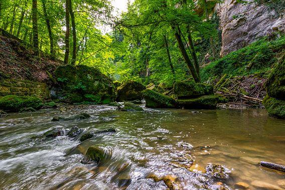 Mullerthal Trail XI