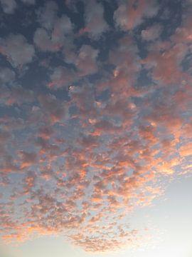 Sonnenuntergang Wolken, Sharm el Sheikh, Rotes Meer, Ägypten, Mindseye Photography Egypt von 1x