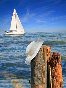 Zeilen op de kust