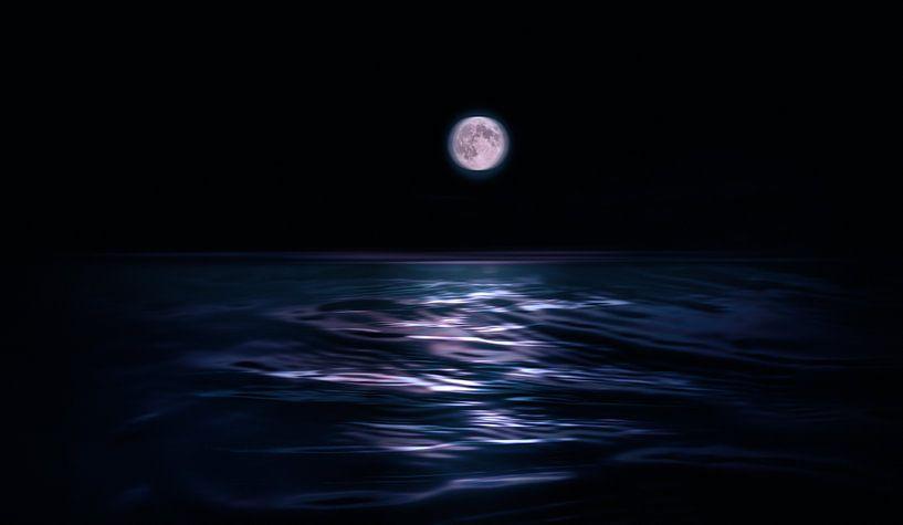 Nachtschwimmen von Adrien Hendrickx