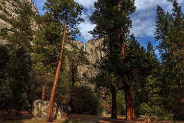 Yosemite Park van Rolf Linnemeijer