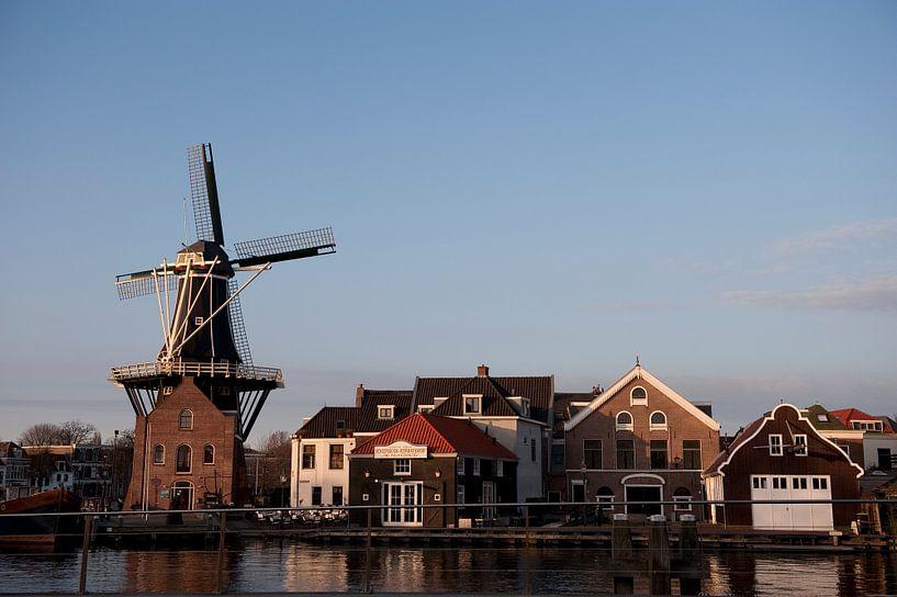Haarlem De Adriaan van Brian Morgan