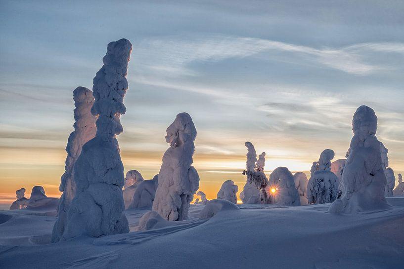Winter wonderland van Menno Schaefer