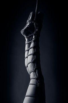 Ballett & Rope - Der Seil-Tanz von Catherine Mason