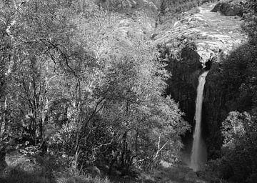 Waterval in Noorwegen van Rob van Dam