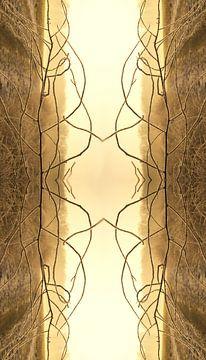 Goldene Linien von Edith van Aken