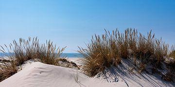In de duinen bij de zee van Christoph Schaible
