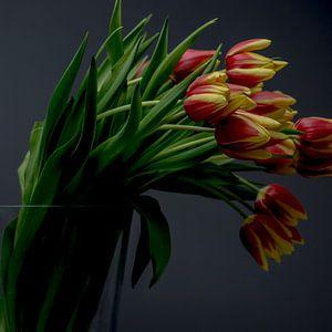 Tulpen sur Christian Reijnoudt