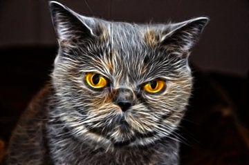 Flaming Feline van Wouter Kok
