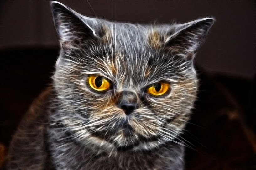 Flaming Feline von Wouter Kok