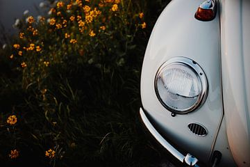 VW Beetle 1964 van