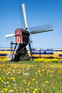 Molen in Hollandse polder van