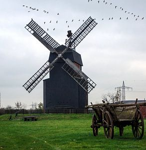 Paltrockwindmühle van Georg Tausche