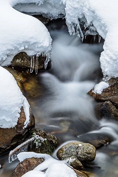 Stromend beektje in de sneeuw van Wouter van Woensel