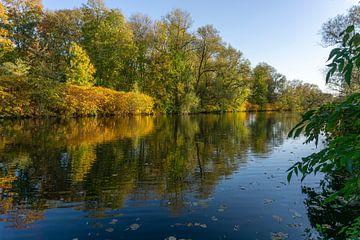 Herfst op de rivier Lenne in Hagen van Peter Schickert