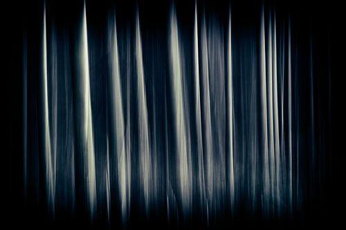Lijnenspel met bomen van Sanneke Kortbeek