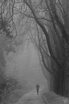 Im Nebel von Photo Julleke