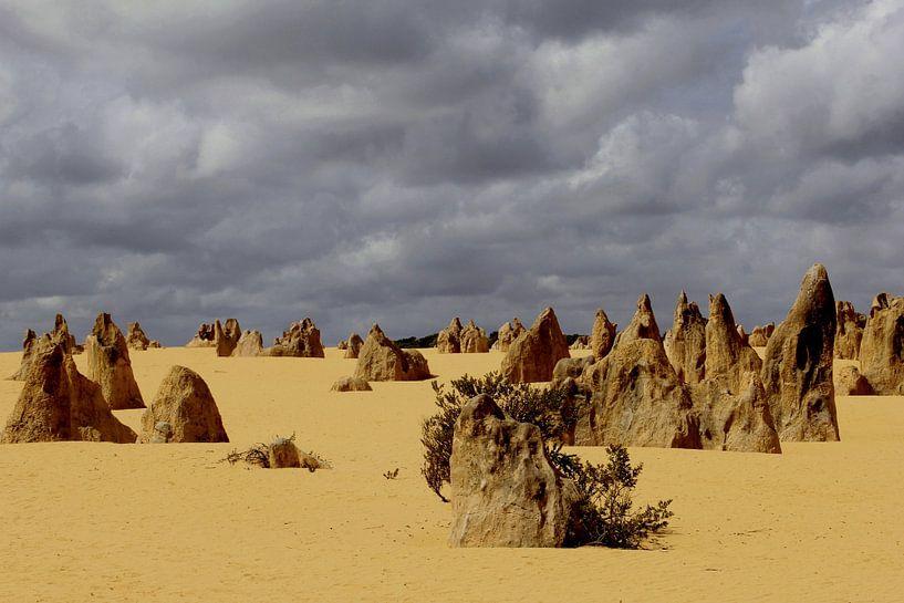 Dreiging in Pinnacles woestijn van Inge Hogenbijl