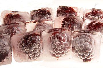 Blackberrys in ice van