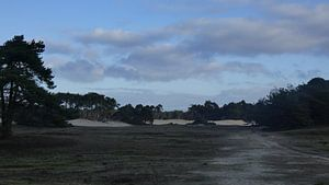 Wekeromse zand van