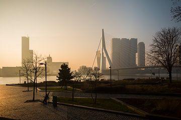 Mistige ochtend van Dennis Vervoorn
