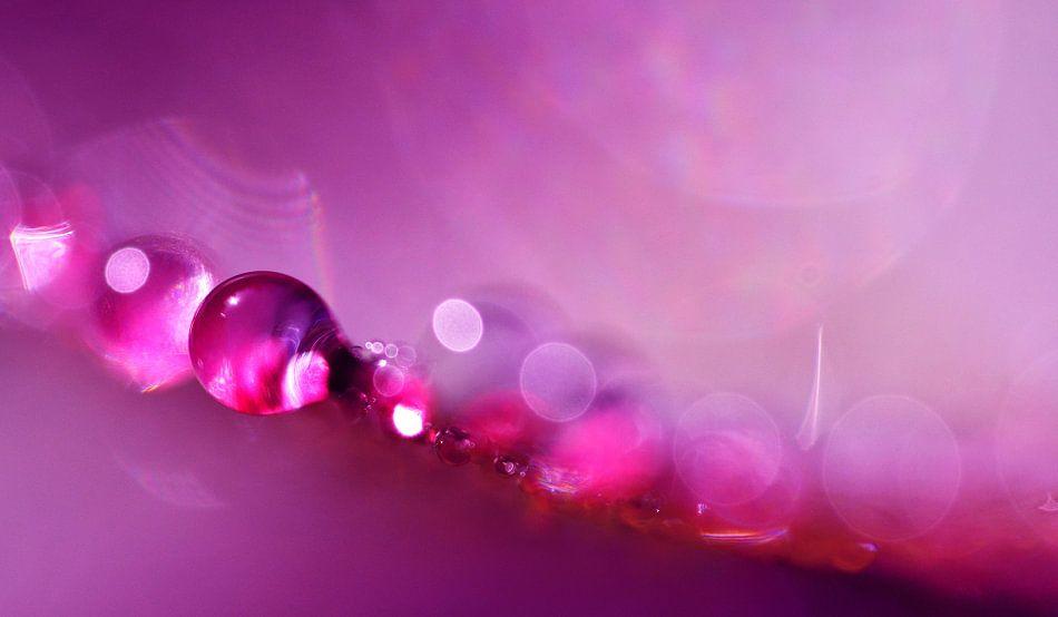 Drop Art Pink van Jessica Berendsen