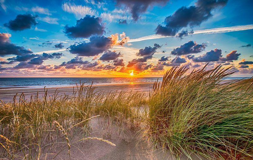 Summer Beach July - Hollandse Duinen van Alex Hiemstra