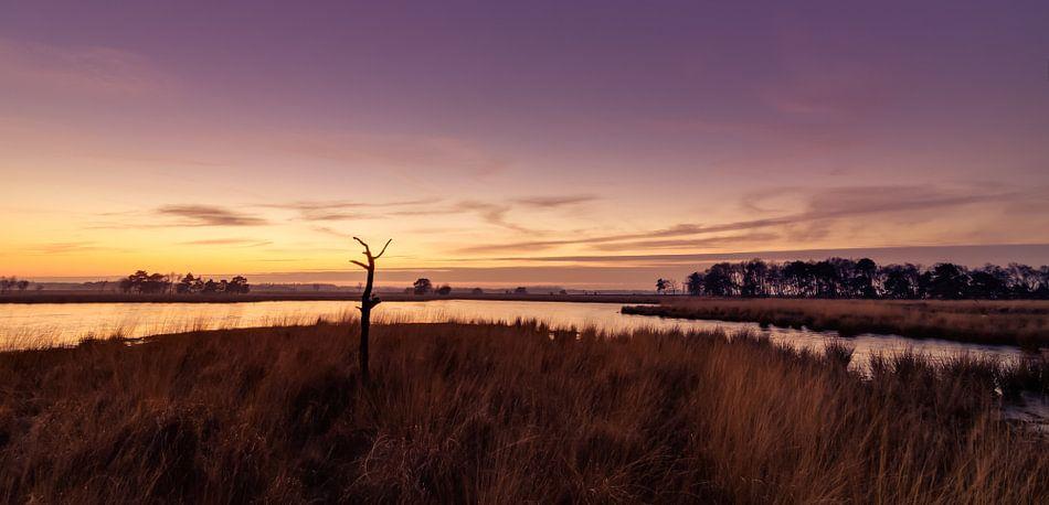Strabrechtse Heide 164