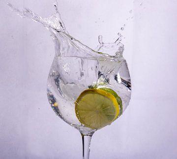 Citroen en limoen in water van Rob Hansum