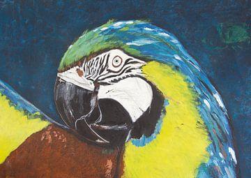 Papagei van Susanne A. Pasquay