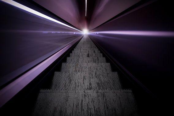 Take me to the light