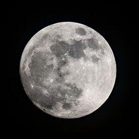 Volle maan in de donkere nacht van Sjoerd van der Wal