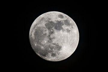 Pleine lune dans le ciel nocturne sur Sjoerd van der Wal