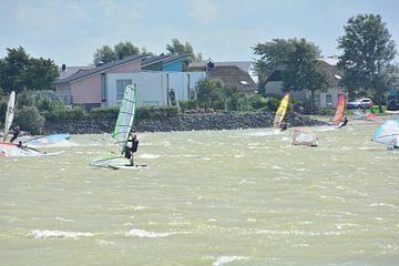 Surfen op het IJsselmeer  van Nico Feenstra