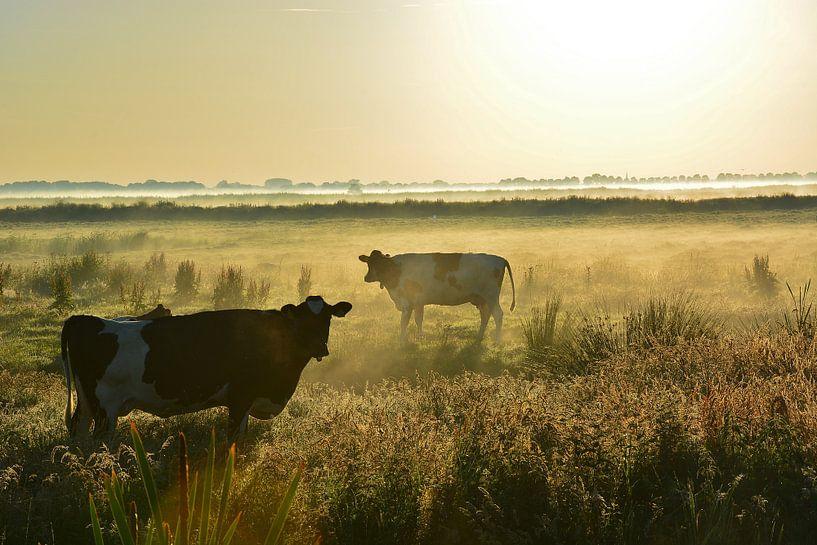 Koeien in de mist van Maurice Kruk