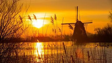 Gekleurde, koude, licht bewolkte  zonsopkomst van Ab Donker