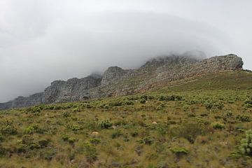 Tafelberg im Nebel von Quinta Dijk