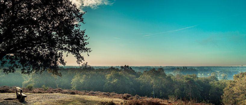 Vue panoramique du Mookerheide sur Bas Stijntjes