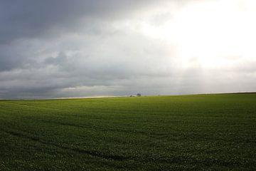 Gloomy day in the field van Armand L'Ortije