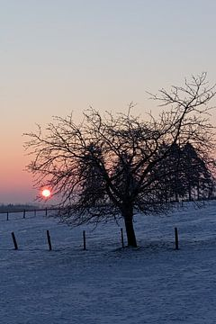 Winterlandschap in Malmedy van