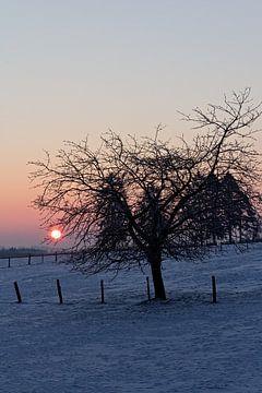 Winterlandschap in Malmedy van Christophe Fruyt