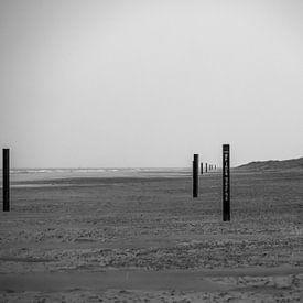 Schwarze Strandpfosten von Martijn Tilroe