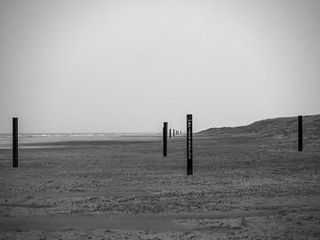 Zwarte strandpalen