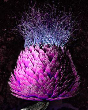 Blossfeldt-Distel von GoStijn