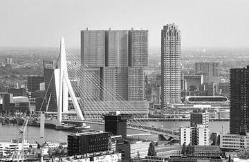Die Erasmusbrücke und der Wilhelminapier in Rotterdam von MS Fotografie | Marc van der Stelt