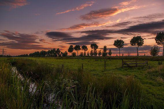 De Hollandse avonden van Robin Pics
